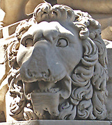 One of the Medici lions displayed at the Loggia dei Lanzi, Florence, Italy. One of two marble lion sculptures originally placed around at the Villa Medici (circa 1600 AD) and displayed at the Loggia dei Lanzi since 1789. The sculpture depicts a standing male lion looking to the side, with a sphere under his paw. The first lion originates from the 2nd century BC. It was a relief that was reworked by Giovanni di Scherano Fancelli in 1598. The second was made sometime between 1570 and 1598 by Flaminio Vacca as a pendant to the first.