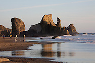 Coquille Pointe, Oregon Islands National Wildlife Refuge located at Bandon, Oregon features stunning sea stacks and a long sandy beach with wild nesting sea birds.