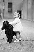 Cocker Spaniel Club of Ireland Dog Show Championships.21.04.1961