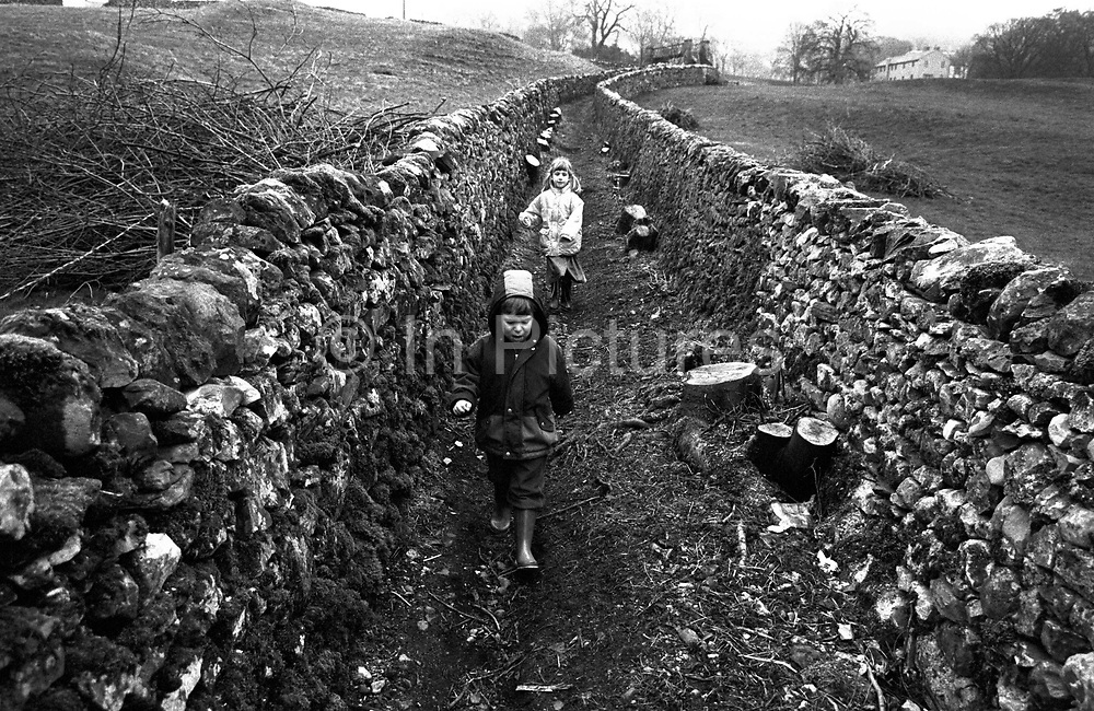 Two children walk along a path between two dry stone walls in the countryside around the Yorkshire town of Settle. Striding between the boundaries of agricultural grazing land, whose trees and undergrowth has been cleared, the kids have come from a distant farmhouse which has recently lost its stock of sheep due to Foot and Mouth disease. Dry stone walls serve as boundaries and enclosures for farmers and land owners. Built by tradesmen called Wallers, a dying tradition and skill, they're constructed from stones without any mortar to bind them together. The stones must be carefully selected by shape to ensure that they have a large contact surface area with their neighbours and so do not slip. They are a legacy of the movement towards enclosure of common farming and grazing land as English society moved away from medieval feudalism. Model released.