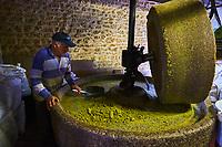France, Saône-et-Loire (71), Iguerande, huilerie artisanale Jean Leblanc et fils, fabrication de l'huile de pistache avec une meule de pierre // France, Burgundy, Saône-et-Loire (71), Iguerande, traditional oil factory, pistachio oil