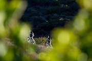 James Lennard and Craig Denbury during the Prologue of the 2017 Absa Cape Epic Mountain Bike stage race held at Meerendal Wine Estate in Durbanville, South Africa on the 19th March 2017<br /> <br /> Photo by Greg Beadle/Cape Epic/SPORTZPICS<br /> <br /> PLEASE ENSURE THE APPROPRIATE CREDIT IS GIVEN TO THE PHOTOGRAPHER AND SPORTZPICS ALONG WITH THE ABSA CAPE EPIC<br /> <br /> {ace2016}