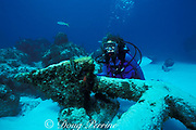 diver examines fluke of anchor from <br /> wreck of old English warship, Little Bahama Bank,<br /> near Walker's Cay, Bahamas ( Western Atlantic Ocean )  MR 89