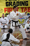 Black Belt Master Class with Master Lowe, First Tae Kwon Do, Perth, Western Australia. June 2018