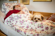 An ill pensioner who is in home care is getting comforted by therapy dog Lisa.
