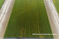 63801-10715 Corn field after it's been cut for silage-aerial Marion Co. IL