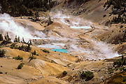Morning light on steam rising from the Bumpass Hell geothermal area, Cascade Mountains  (Pacific Ring of Fire), Lassen Volcanic National Park, California