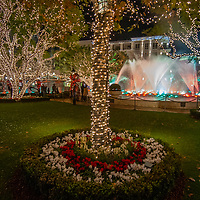 Shoppers enjoy Christmas lights, a fountain display and an artificial snowfall at the Americana Mall in Glendale, California.
