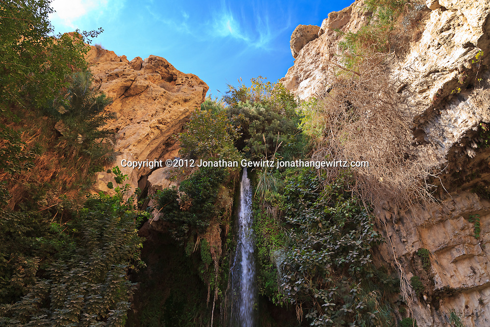 The David Waterfall at the head of Nahal David in the Ein Gedi nature preserve. WATERMARKS WILL NOT APPEAR ON PRINTS OR LICENSED IMAGES.