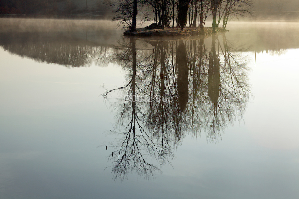 early morning water dampness with trees in island in a lake