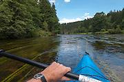 Kanutour auf Schwarzer Regen, Bayerischer Wald, Bayern, Deutschland | canoe tour on river Schwarzer Regen, Bavarian Forest, Bavaria, Germany