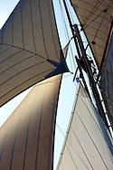 """29SEP09 Les Voiles De St Tropez 2009..The sails of the 1892 Charles E Nicholson 24m build """"Marigold""""."""