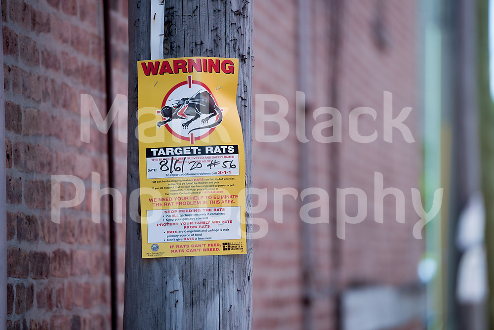 Rat Patrol sign in an alley in Chicago's Chinatown on Wednesday, Aug. 19, 2020.  Photo by Mark Black