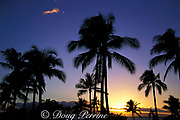 coconut palms at sunset in front of Sheraton<br /> Ka'anapali Beach, Maui, Hawaii, USA ( Pacific )