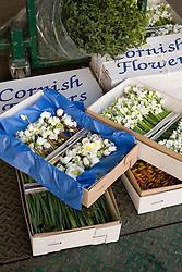 British grown cut flowers - hellebores (Helleborus niger)  snowflakes (leucojum) and widow iris (Hermodactylus tuberosus) in their boxes at Moyses florists