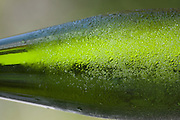 Bottle of chilled white wine