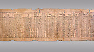 """Ancient Egyptian Book of the Dead papyrus - Spell 33 for keeping snakes away, Iufankh's Book of the Dead, Ptolomaic period (332-30BC).Turin Egyptian Museum. Grey Background<br /> <br /> the spell reads ' O Rerek! Move not! Behold Geb and Shu have risen against you, for you have eaten a mouse, the abomination of Re"""" you have crunched the bones of a putrified cat""""<br /> <br /> The translation of  Iuefankh's Book of the Dead papyrus by Richard Lepsius marked a truning point in the studies of ancient Egyptian funereal studies. .<br /> <br /> If you prefer to buy from our ALAMY PHOTO LIBRARY  Collection visit : https://www.alamy.com/portfolio/paul-williams-funkystock/ancient-egyptian-art-artefacts.html  . Type -   Turin   - into the LOWER SEARCH WITHIN GALLERY box. Refine search by adding background colour, subject etc<br /> <br /> Visit our ANCIENT WORLD PHOTO COLLECTIONS for more photos to download or buy as wall art prints https://funkystock.photoshelter.com/gallery-collection/Ancient-World-Art-Antiquities-Historic-Sites-Pictures-Images-of/C00006u26yqSkDOM"""
