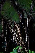 Santana do Riacho_MG, Brasil...Lapa da Sucupira na Serra do Cipo, Santana do Riacho, Minas Gerais...The Lapa da Sucupira in Serra do Cipo, Santana do Riacho, Minas Gerais...Foto: LEO DRUMOND / NITRO