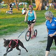 Western Australian Sleddog Sports Association Beginners' Day page 2