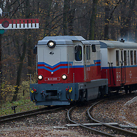 Train closes to a semaphore as it arrives to a station of the Children's Railway in a forest in the Buda Hills in Budapest, Hungary on November 15, 2014. ATTILA VOLGYI