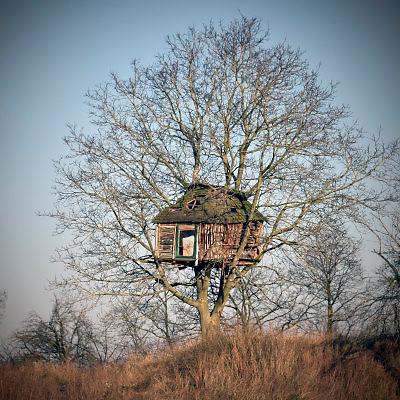 Nederland, Oosterhout, 8-1-2018Een grote boomhut, boomhuis, in een kale boom.Foto: Flip Franssen
