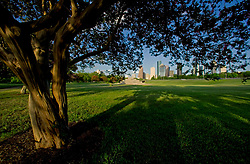 Serene view of a sunny day Houston skyline from a shady spot on the lawn under a tree in Buffalo Bayou Park.