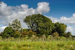 Abcoude, De Ronde Venen, Utrecht, Netherlands, Fort bij Nigtevecht.