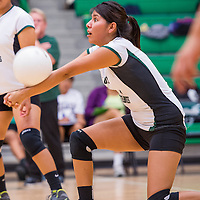 100113       Cable Hoover<br /> <br /> Newcomb Skyhawk Tania Yazzie (1) connects with a serve from the Navajo Prep Eagles Tuesday at Newcomb High School.