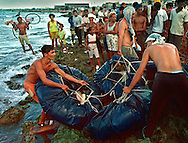 8/1994-Al Diaz/Miami Herald--Cubans struggle to get their raft to water as onlookers gather on the jagged shoreline of Cojimar. It was estimated that out of every 10 Cubans who tried to leave by raft, only four made it to U.S. shores. Some gave up and returned home. Some were arrested before they escaped Cuban waters. Many were picked up at sea by the U.S. Coast Guard, and spent the next several months in refugee camps. The rest died at sea.