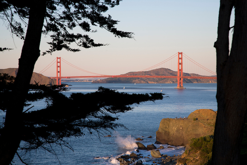 Cypress trees framing Golden Gate Bridge at sunset, Eagles Point, San Francisco, California