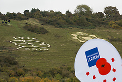 © Licensed to London News Pictures. 28/10/2016. CITY, UK. A giant chalk poppy is unveiled among the Fovant badges in Wiltshire to launch the County Poppy Appeal.  The carving is 25m in diameter. Photo credit : Laura Dale/LNP