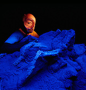 Dave Thomas excavates Seismosaurus bones which are the same color as the stone surrounding them.  Bones from the Morrison Formation are about 200X more radioactive than the stone so a black light is used in preparation.