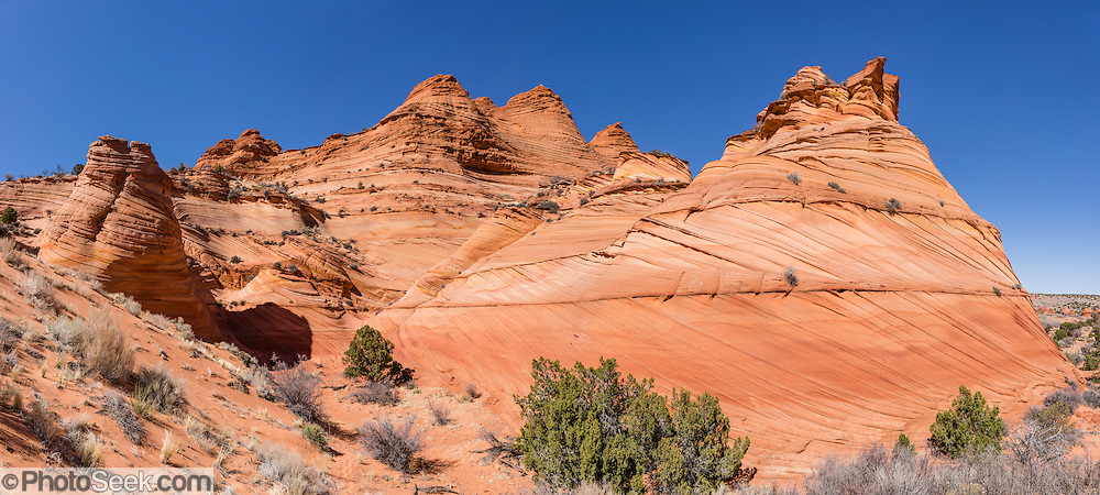 Explore colorful fossilized sand dune buttes in the Paw Hole section of South Coyote Buttes, in Vermilion Cliffs National Monument, Arizona, USA. The Coyote Buttes area exposes cross-bedded aeolian Jurassic Navajo Sandstone. Various iron oxides bled through the sandstone layers to create a salmon color; hematite and goethite added yellows, oranges, browns, and purples. For the required hiking permit, contact the US Bureau of Land Management (BLM, in Kanab, Utah). Access to this Federal public land is regulated to protect fragile geologic formations. Coyote Buttes are within Vermilion Cliffs National Monument (established in 2000 within Arizona), which is within Paria Canyon-Vermilion Cliffs Wilderness Area (established in 1984 spanning across the borders of Utah and Arizona). The panorama was stitched from 6 overlapping photos.