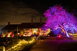 © Licensed to London News Pictures. 30/11/2018. London, UK. A tree and the main house are floodlit at RHS Wisley Gardens. Trees and plants have been illuminated at Royal Horticulture Society Wisley Gardens for the Christmas Glow seasonal event. Hundreds of different lights can be seen when following the trail throughout the gardens opening 1 December 2018 2 January 2019. Photo credit: Peter Macdiarmid/LNP