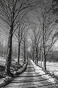 Près de Saint-Sylvestre en Beauce (Québec, Canada), nous trouvons la sucrerie de Ferland et le chemin qui y mène.Near Saint-Sylvestre in Beauce (Quebec, Canada) we find the Ferland sugar refinery and the path leading to it.