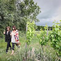 """Nederland, Markelo , 19 juni 2010..Televisiepresentatrice Astrid Joosten en Therese Boer, sommelier in drie Michelin sterren restaurant de Librije in Zwolle, tevens schrijfsters van de wijnboeken Vrouwen gek op wijn en het boek Gek op wijn, wandelend tussen de wijnranken tijdens een wandeling over de Markelose berg bij Markelo. .Two writers of the book """"Mad about Wine"""", Astrid Joosten and Therese Boer visit the Dutch vineyard in Markelo, in the east of the Netherlands."""