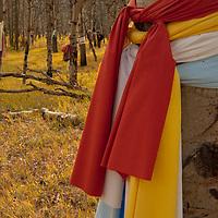 Native American prayer cloths adorn aspen trees at a sacred site in the Saskatchewan River Valley near Banff National Park in Alberta, Canada.