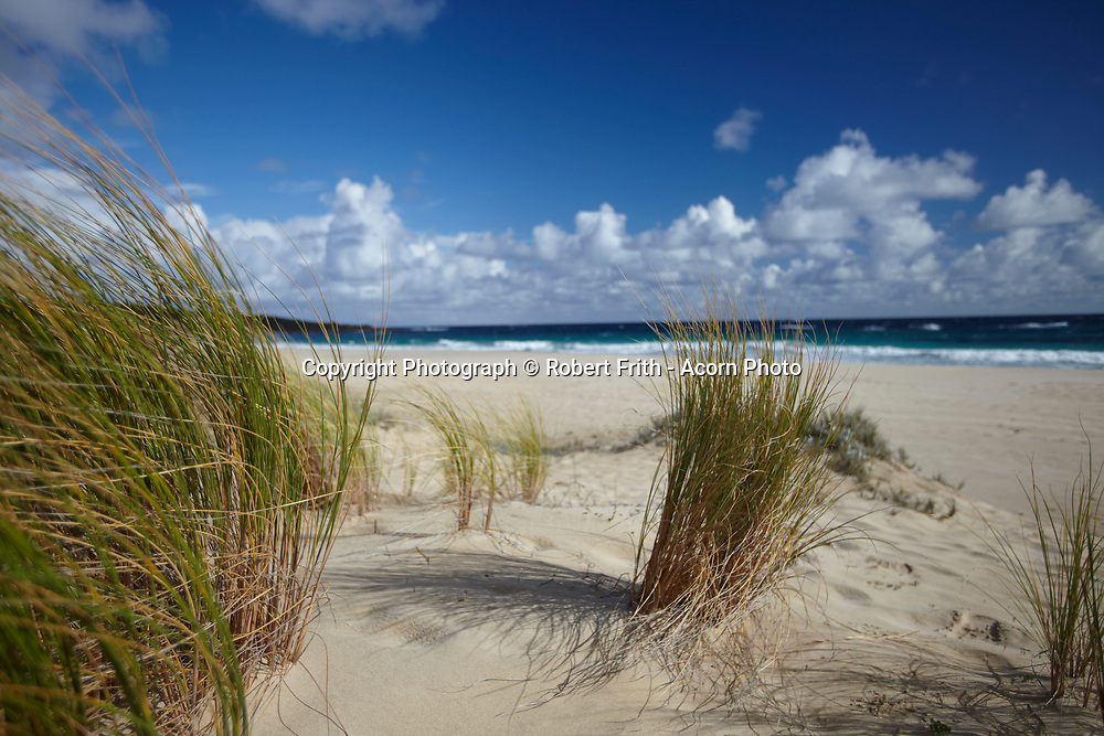 Windy day in the dunes at Smiths Beach, Yallingup
