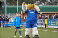 Haydon the Womble pointing to the sky during the The FA Cup 5th round match between AFC Wimbledon and Millwall at the Cherry Red Records Stadium, Kingston, England on 16 February 2019.