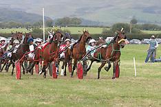 2007 Races