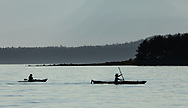 Kayakers returning to Auke Bay in Southeast Alaska. Summer. Evening.