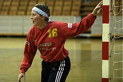 Goalkeeper of Brezice Lidija Radovanic at  handball game between women team RK Olimpija vs ZRK Brezice at 1st round of National Championship, on September 13, 2008, in Arena Tivoli, Ljubljana, Slovenija. Olimpija won 41:17. (Photo by Vid Ponikvar / Sportal Images)
