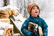Young boy helping carry in firewood on a snowy winter day in Summit County, Colorado.