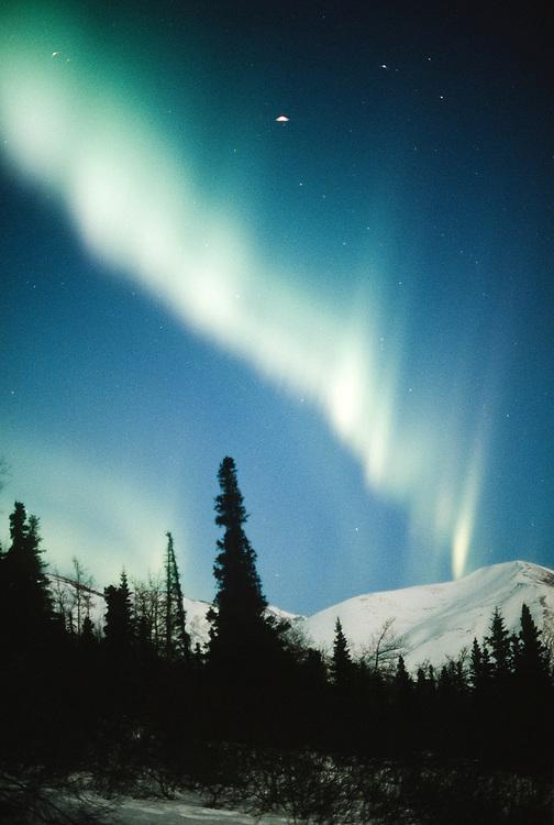 Alaska. Northern Lights aurora borealis brighten up the winter sky.