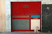 Un locale al piano terra, nato per ospitare un negozio e trasformato in abitazione nel quartiere periferico Enziteto di Bari . Bari, 30 maggio 2006. Christian Mantuano / OneShot
