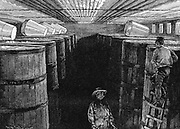 Fermenting cellar in an American brewery. Wood engraving 1885.
