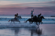 Three horse riders in full gallop at the beach at dusk.