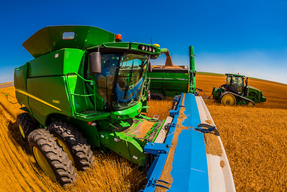 Combine harvestors unload their grain into a grain wagon pulled by a tractor during the wheat harvest, Schields & Sons Farming, Goodland, Kansas USA.