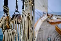 France, Manche (50), Granville, croisière à bord du Lys Noir, vieux gréement de 1914 // France, Normandy, Manche department, Chausey isands, cruise on the sailboat the Lys Noir