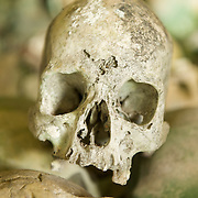 Human skull in a cave in West-Papua